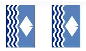 Wiltshire New British County 3 metre long 10 flag bunting