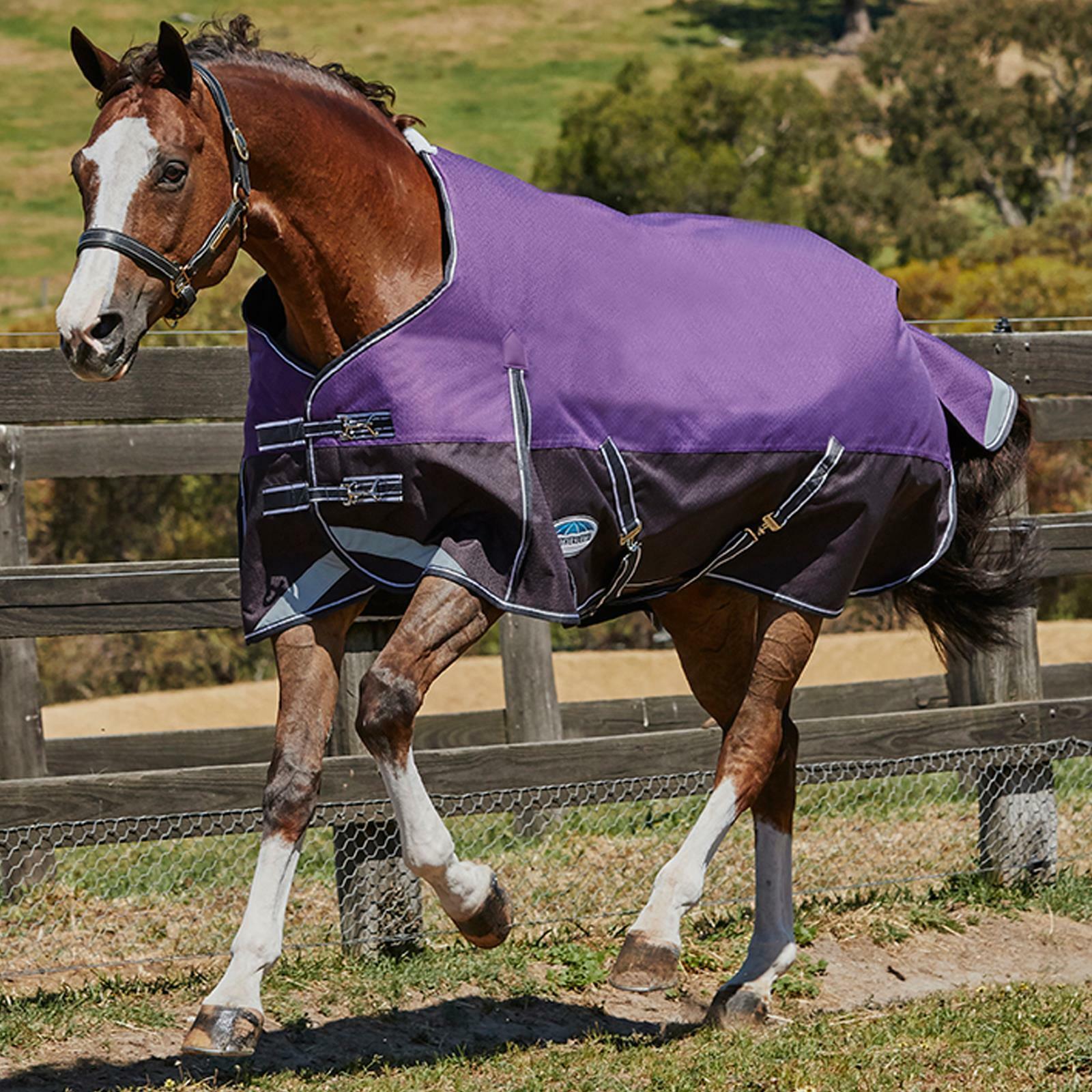 Weatherbeeta comfitec PLUS dinamico Standard Collo 0g Resistente Tappeto Cavallo affluenza alle urne