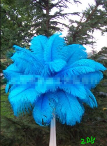 Belle naturel plumes d/'autruche 14-22 in//35-55 cm différentes couleurs