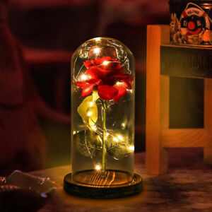 Beauty And The Beast Enchanted Rose Glass Dome Led Lighted Wedding