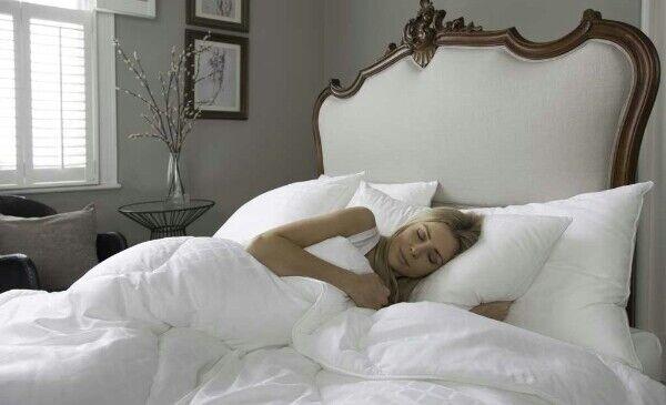 = Fine Bedding Company Boutique Silk Duvet 10.5 Tog Hotel Quality 260x220 34 21