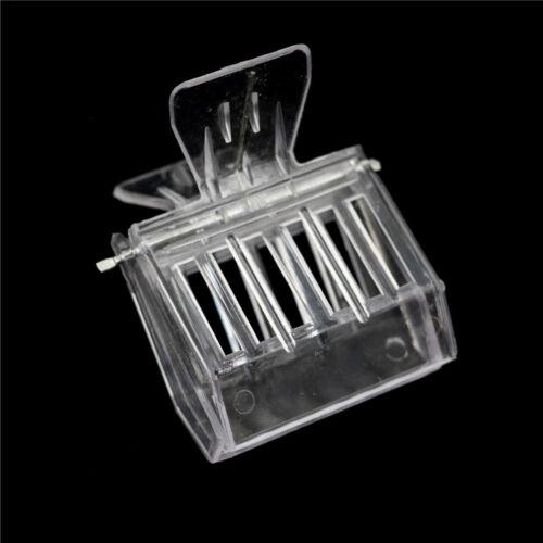 2Pcs Bee Tools Queen Cage Colorless Plastic Clip Bee Clip Beekeeping Equipment X