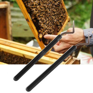 2 Beekeeping Grafting Tools High Quality Transfer Needle Beekeeping E9G6