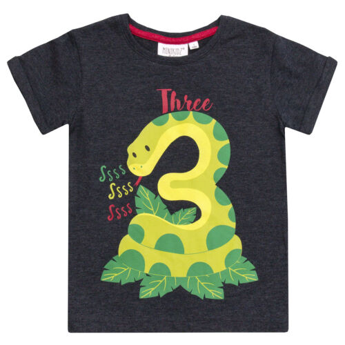Infant Boys and Girls Age Number Tshirt Tops Childrens Kids Gift NEW Minikidz