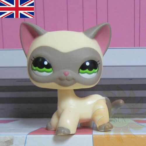 Littlest Pet Shop animaux collection LPS jouets enfant #1116 masqué Pussy Chat Kitty