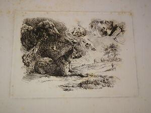 Ecole-FRANCAISE-XIX-GRAVURE-EAU-FORTE-BARBIZON-CHARLES-JACQUE-CHAIGNEAU-1850