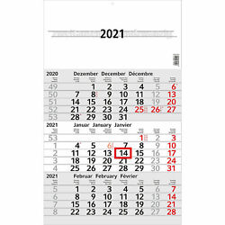 Wandkalender Budget 3 Monate pro Seite 2021 Hellgrau