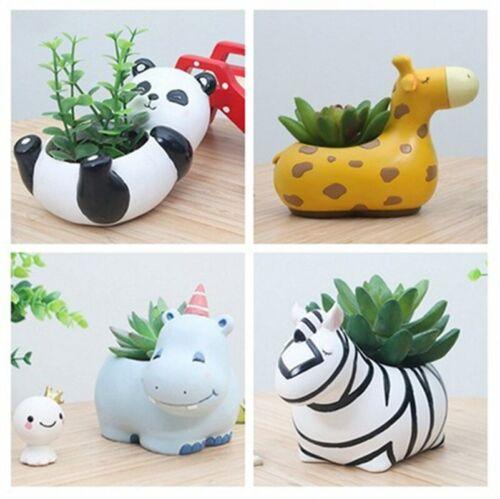 Cute Colorful Cacti Succulent Plant Pot Flower Planter Mini Garden Animal Design