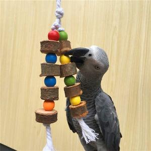 Uccelli in legno naturale Pappagallo Giocattoli colorati Morso da masticare DxI
