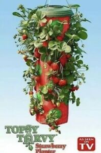 Strawberry-Planter-Vegetable-Herb-Upside-Down-Hanging-Topsy-Turvy-Vertical-Grow