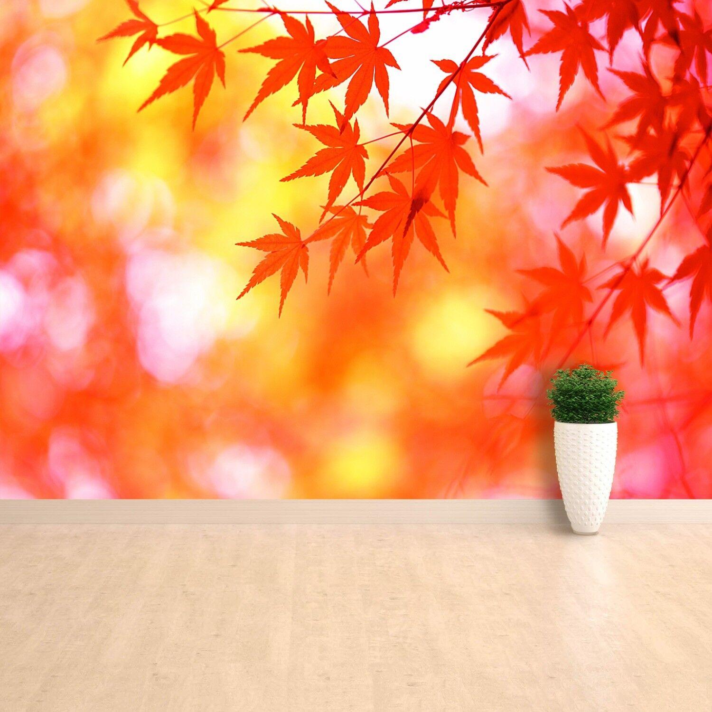 Fototapete Selbstklebend Einfach ablösbar Mehrfach klebbar Blätter Orange