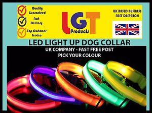 LED-Dog-Pet-Collar-Flashing-Luminous-Adjustable-Safety-Light-Up-Nylon-FREE-POST
