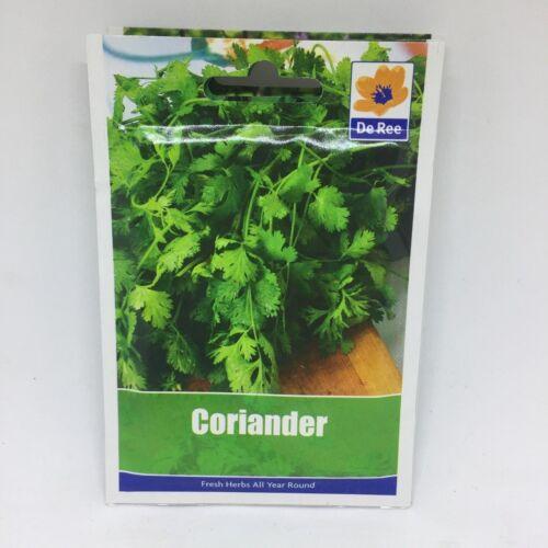 Pack of 2 De Ree Coriander Plant Seeds 23