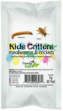 Edible Insects Bugs Kids Critters Mealworms & Crickets 5g Crunchy Critters