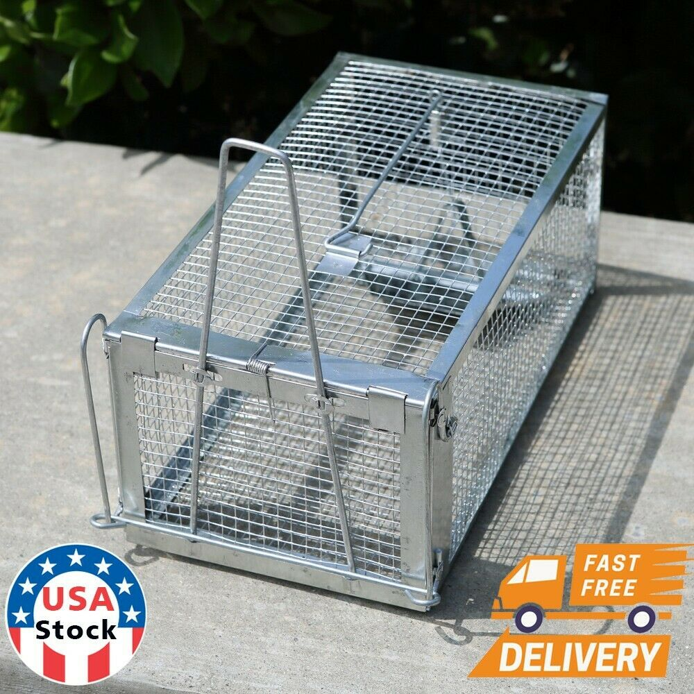 2pcs Live Animal Trap Steel Cage for Small Live Rodent Control Rat Squirrel