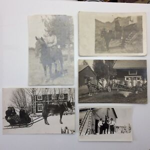 Lot-Of-5-Sepia-Photographs-Men-Women-Horse-Sleigh-Riding-Houses-Uniforms-F090