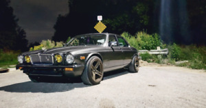 1988 Jaguar XJ12 Vdp