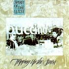 Tripping Up the Stairs by Spirit of the West (CD, Jun-1999, Stony Plain)