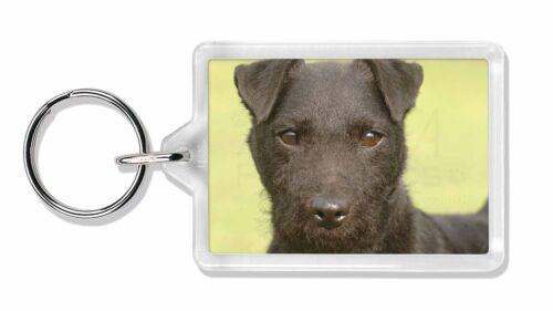 Patterdale Terrier Dog Photo Keyring Animal Gift, AD-PT2K