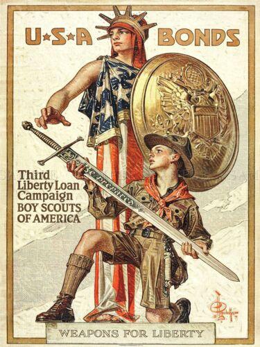 PROPAGANDA WAR WWI USA LIBERTY SWORD SCOUT BOY SHIELD ART POSTER PRINT LV7277