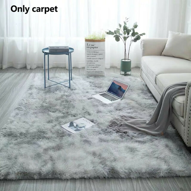 Fluffy Living Room Area Rug Anti Slip Modern Super Soft Floor Carpet Easy Clean