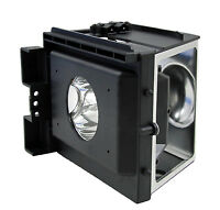 Samsung Bp96-00826a Dlp Lcd Tv Lamp W/housing Bp9600826a Hlp4663w Hlp5067w