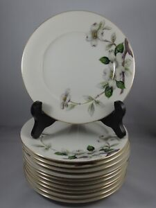 Meito-Norleans-China-Livonia-6-1-2-034-Bread-Butter-Plates-Dogwood-Flowers-11pcs