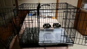Dog-Potty-Training-CAGE-with-2-doors-Divider-Crate-Heavy-Duty-Small-Dogs-New