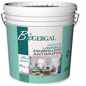 BIOGERGAL Pittura murale lavabile antimuffa per interni | eBay