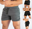 Men-039-s-Swim-Fitted-Shorts-Bodybuilding-Workout-Gym-Running-Tight-Lifting-Shorts thumbnail 4