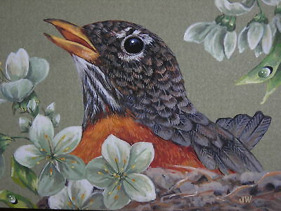 ACEO Spring Robin bird Cherry Blossom print