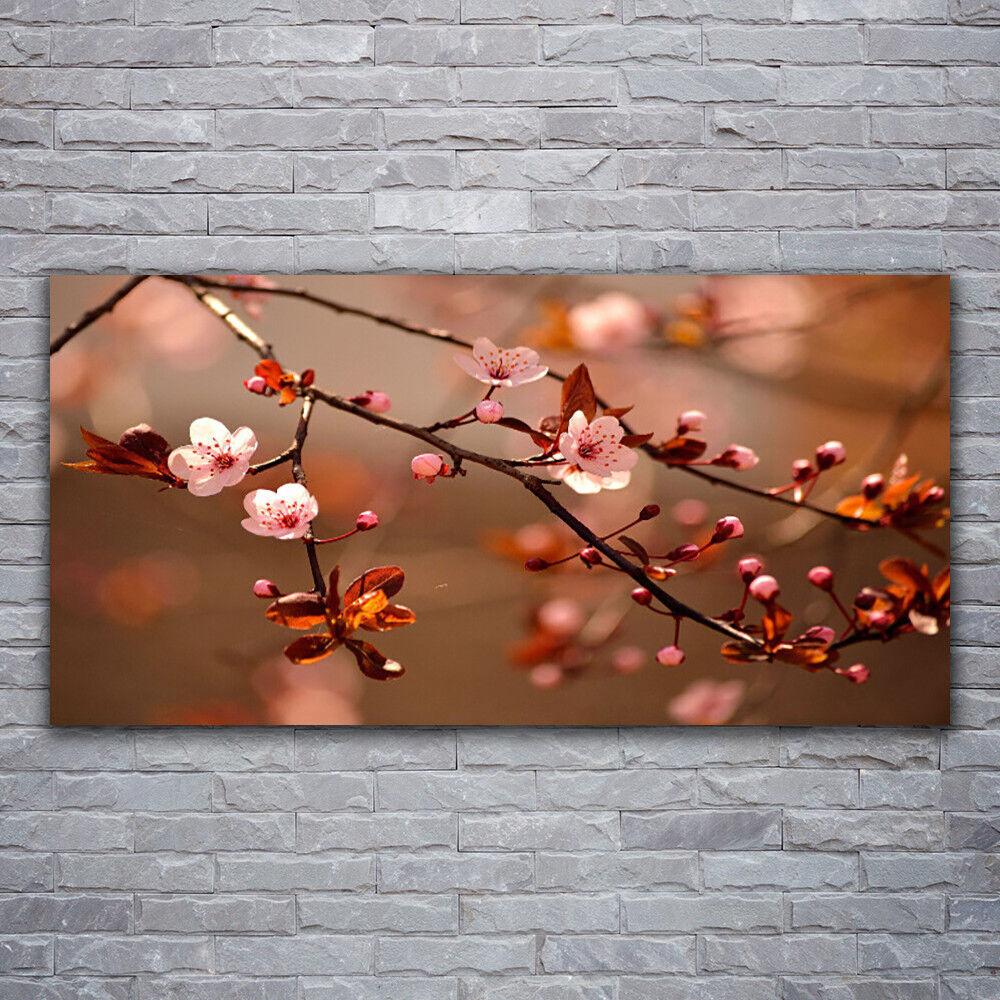 Wandbilder Glasbilder Druck auf Glas 120x60 Blütenzweig Natur