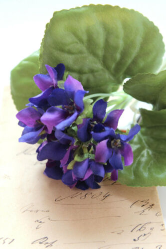 zarter Veilchenstrauß Veilchen Strauß 1:1 mit 12-14Blüten violett lila 12x17cm