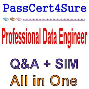 Details about Google Cloud Certified Professional Data Engineer Exam Q&A  PDF+SIM