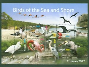 Curaçao 2012-oiseaux Pelikan Flamingo Fregattvogel Baßtölpel Hérons-ko 84-91