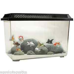 Candid Pt068 Goldfish 12l Fish Tank Tropical Aquarium Breeding Tank Clear 12 Litres Profit Small Aquariums & Tanks
