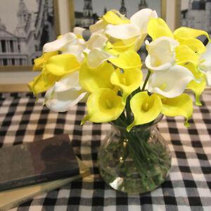 Calla Blüht Nicht : 2x calla lilien birnen nicht samen blumen wurzel gartenpflanze geschenk d h9o3 ebay ~ Watch28wear.com Haus und Dekorationen