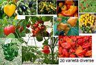 200 semi 20 varietà diverse pepper