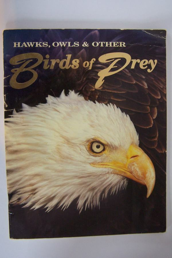Hawks, Owls and Other Birds of Prey by Denise K Fourie
