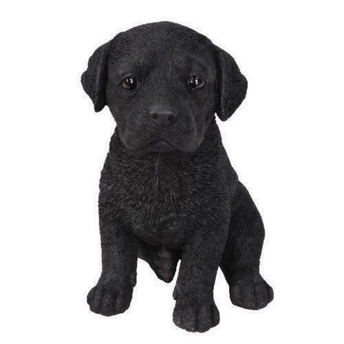 Vivid Arts Pet Pals Black Labrador Pup Dog Ornament Collectable Scaled Gift
