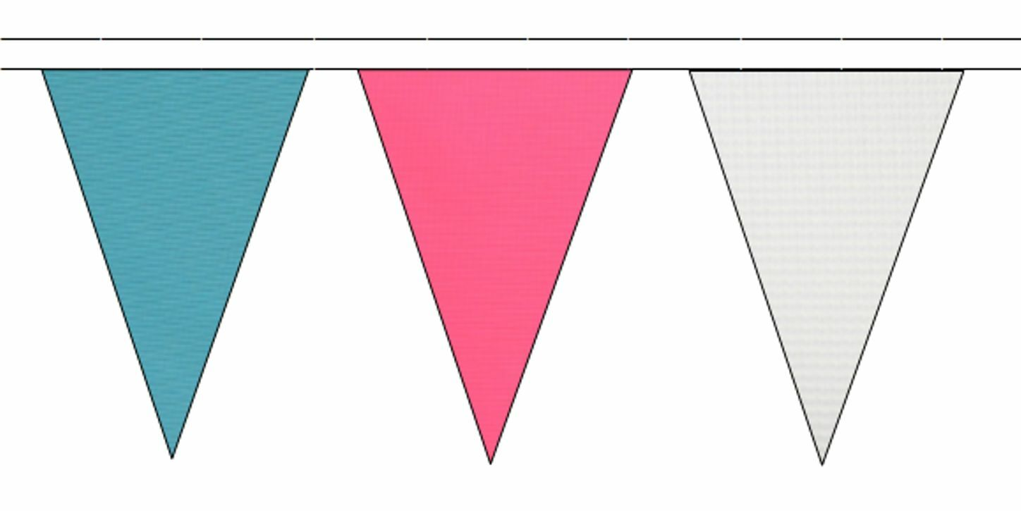 Transgender Pride Flag Colours Triangular Flag Bunting - 50m with 120 Flags