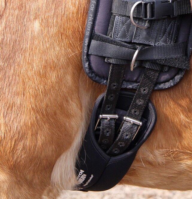 Barefoot Longiergurt verhindert Nussknackereffekt save my Spine Leder Leder Leder Wechsel cf27ee