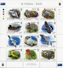 St Helena 2015 MNH Bird Definitives 12v M/S Birds Tropicbird Booby Terns Stamps