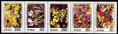 Ausdrucksvoll Syrien Syria 1986 ** Mi.1654/58 Zdr. Blumen Flowers Damaskus PüNktliches Timing