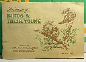 Birds & Their Young-1937-John Player & Sons-Cigarette Cards-Completed Album