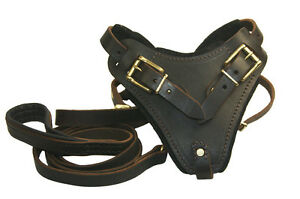 Combo-The-Boss-Leather-Dog-Harness-Soft-Touch-Leash