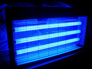 Delightful Image Is Loading LIGHTS ONLY 2 X 60CM UV TUBE FLUORESCENT