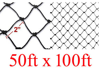 """Bird Netting 50ft X 100ft Net Netting For Bird Poultry Avaiary Game Pens 1/"""" Hole"""