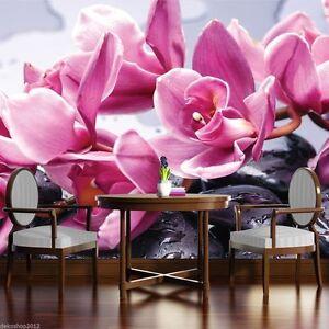 Wallpaper orchidee steine  Fototapete Fototapeten Tapete Tapeten Bild ORCHIDEE STEINE SPA ...