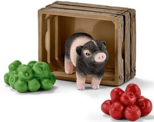 Mini cochon avec pommes SHL42292
